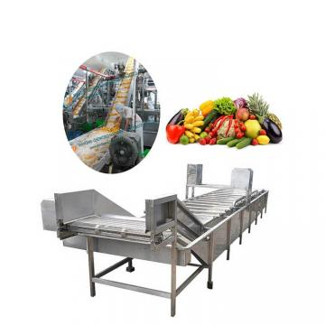 Vacuum Tray Fruit Vegetable Drying Equipment